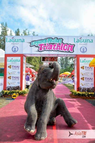 The Tri-league Series and Master Series [Final Race] will take place on Phuket end of 2015