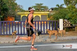 Training : Ironman Race Strategy